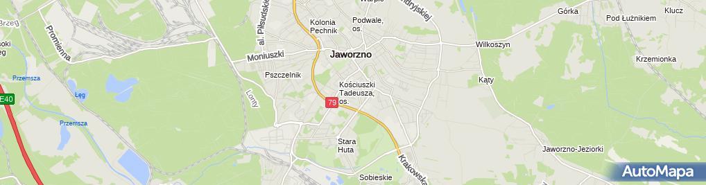 Zdjęcie satelitarne Usługi Remontowo Budowlane Łopusiński Julian