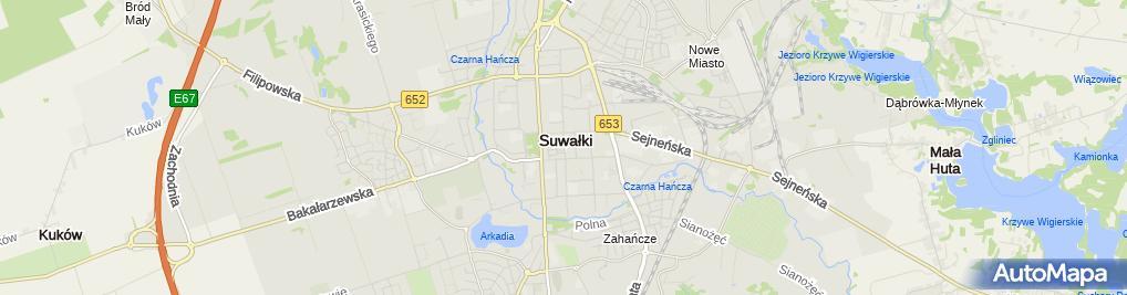 Zdjęcie satelitarne Zakład Garniewski