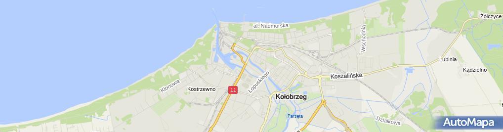 Zdjęcie satelitarne Zakład Ogólnobudowlany Tadeusz i Waldemar Puc