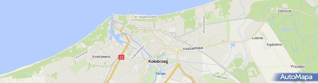 Zdjęcie satelitarne Zakład Usługowy