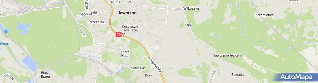 Zdjęcie satelitarne Zieliński Daniel Elektrodan
