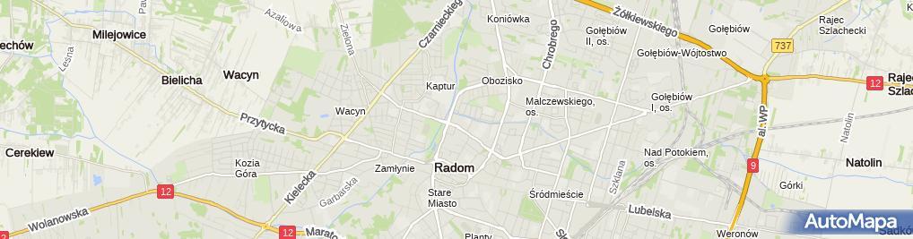 Zdjęcie satelitarne Radomskie Hale Mięsne