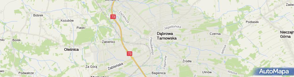 Zdjęcie satelitarne Dąbrowski Dom Kultury