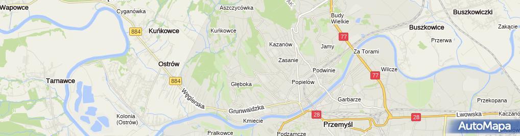 Zdjęcie satelitarne Komunalny Zasanie