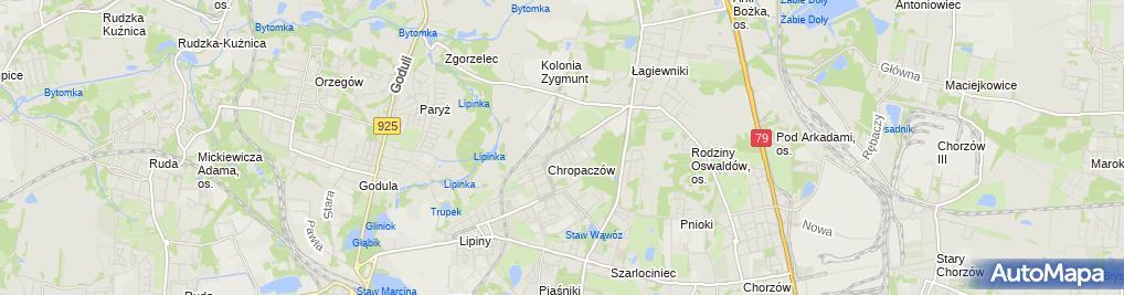 Zdjęcie satelitarne Indywidualna Praktyka Dentystyczna Serwatka