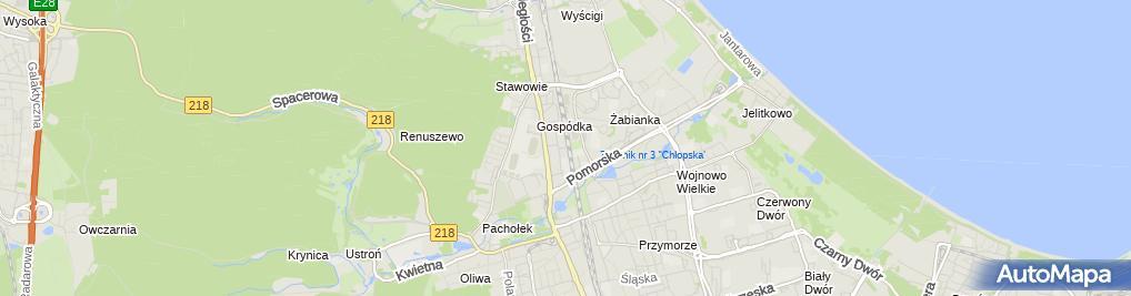 Zdjęcie satelitarne MAXI-WICZ Witold Wiczliński