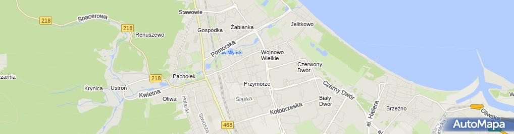 Zdjęcie satelitarne Burgermania