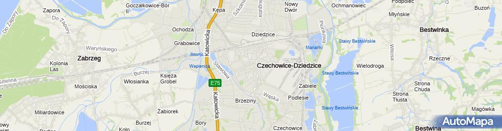 Passe Salon Fryzjerski Ul Klasztorna 1a Czechowice Dziedzice 43