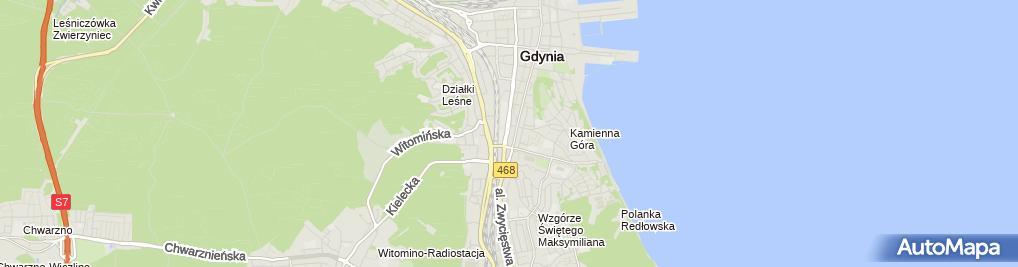 Zdjęcie satelitarne Fundacja Gdyński Most Nadziei