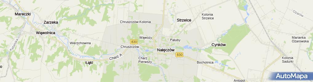 Zdjęcie satelitarne Fundacja Sztuki Mamepro