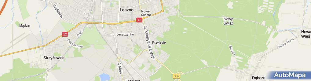 Artykuy Wydarzenia Leszno - directoryzoon.com str. nr 44