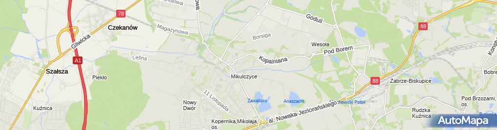 Zdjęcie satelitarne Usługi Informatyczne Poke