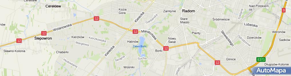 Zdjęcie satelitarne MOSIR Zalew Borki