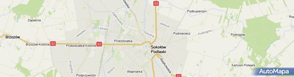 Zdjęcie satelitarne Kapliczka, Figura Świętych, Krzyż