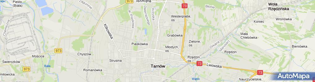 Zdjęcie satelitarne TOM