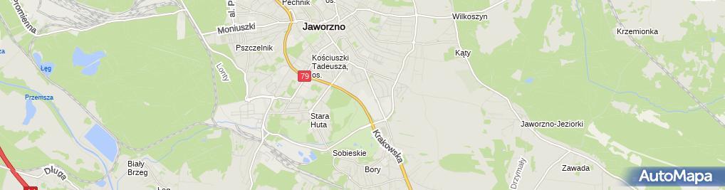 Zdjęcie satelitarne ZG Sobieski