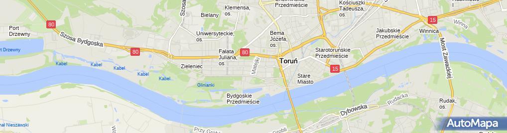 Zdjęcie satelitarne Sanktuarium Matki Bożej Bolesnej