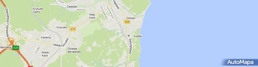 Zdjęcie satelitarne Kwiaciarnia z Mchu i Paproci