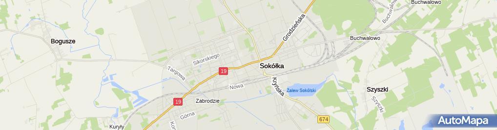 Zdjęcie satelitarne Laro. Bohrzymowska A.