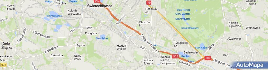 Zdjęcie satelitarne Znicze Kwiaty Usługi Przewozowe Taxi