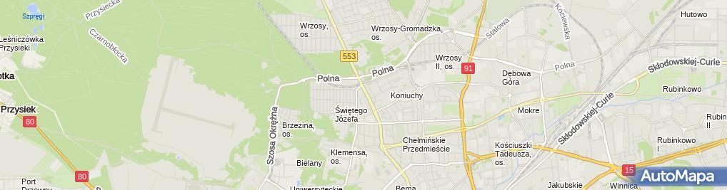 Zdjęcie satelitarne Lodowisko