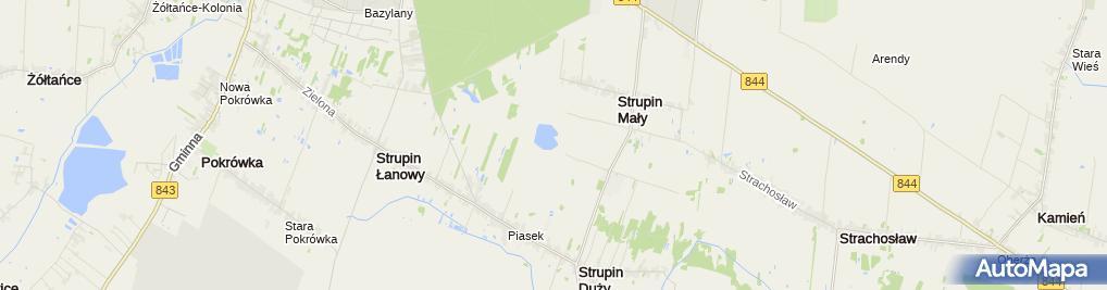 Zdjęcie satelitarne Strupin Mały - staw