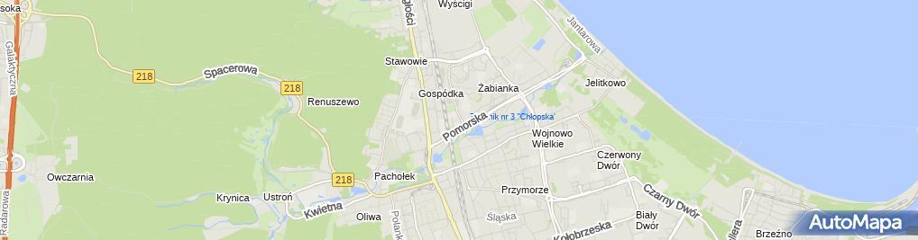 Zdjęcie satelitarne Auto Partner