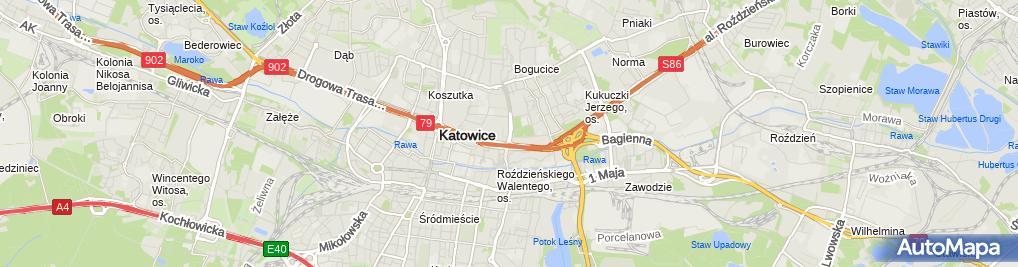 Zdjęcie satelitarne Śląskie