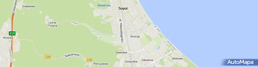 Zdjęcie satelitarne Jazda konna Bursztyn - Hipodrom