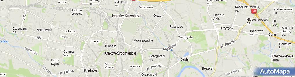 Andre Koszule Męskie, Józefa Brodowicza 16, Kraków 31 518  qlRDP