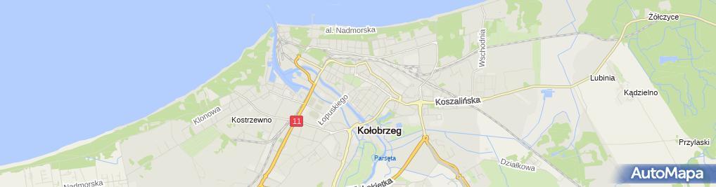 Zdjęcie satelitarne MODA +