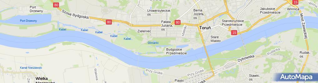 Zdjęcie satelitarne Park Miejski