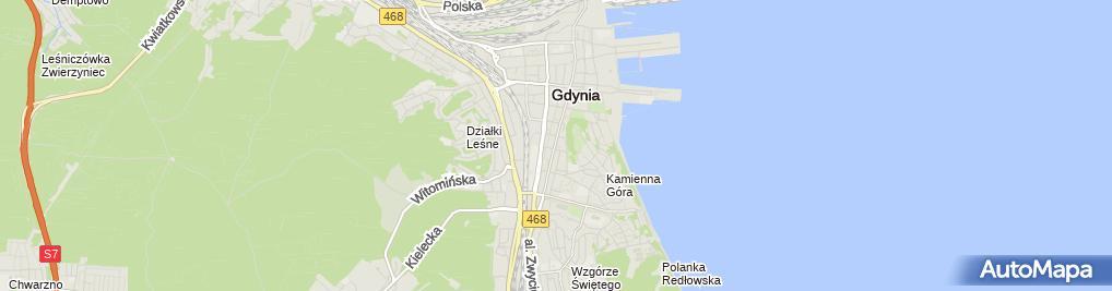 Zdjęcie satelitarne Gdynianka