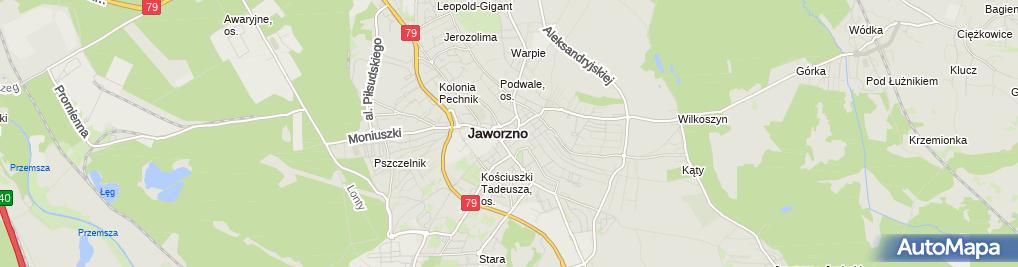 Zdjęcie satelitarne Pizzeria Molto Bene
