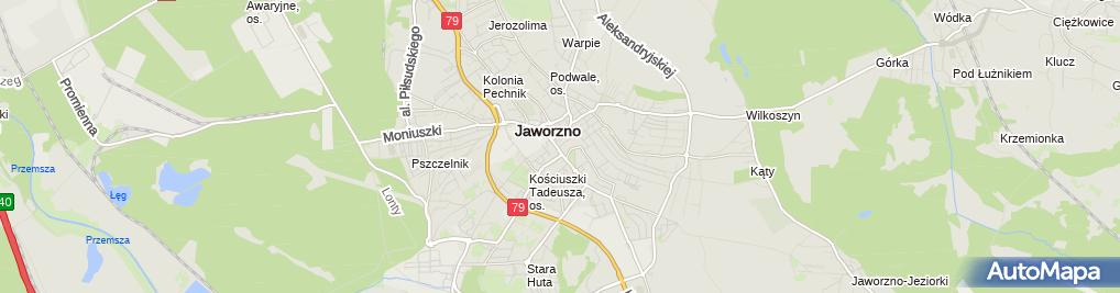 Zdjęcie satelitarne Pizzeria Roma
