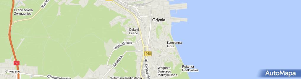 Zdjęcie satelitarne GSM900 Plus