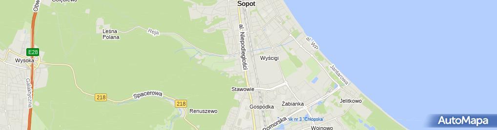 Zdjęcie satelitarne Niepubliczna Poradnia Wspomagania Rozwoju Dreamlab