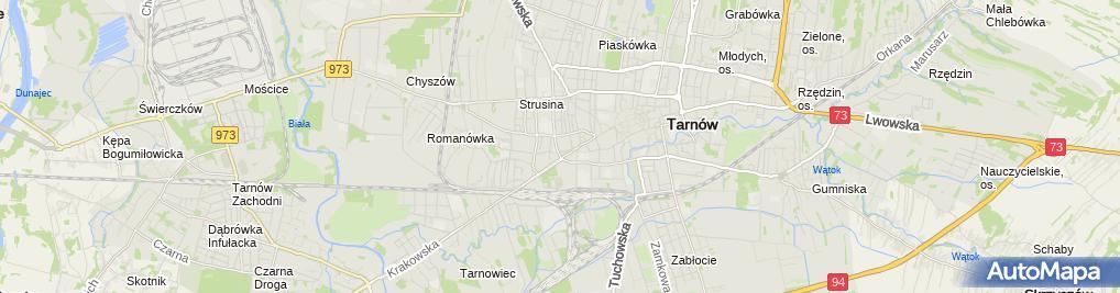 Zdjęcie satelitarne TEMI