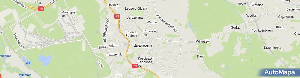 Zdjęcie satelitarne A 1 PPHU Surma Helena Polak Agnieszka