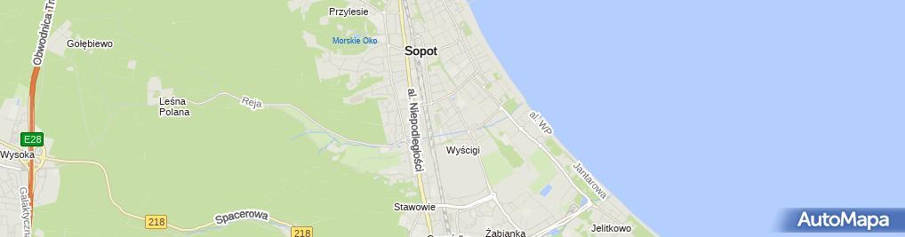 Zdjęcie satelitarne Akme Jarosław Kibiersza Jacek Krawczykowski