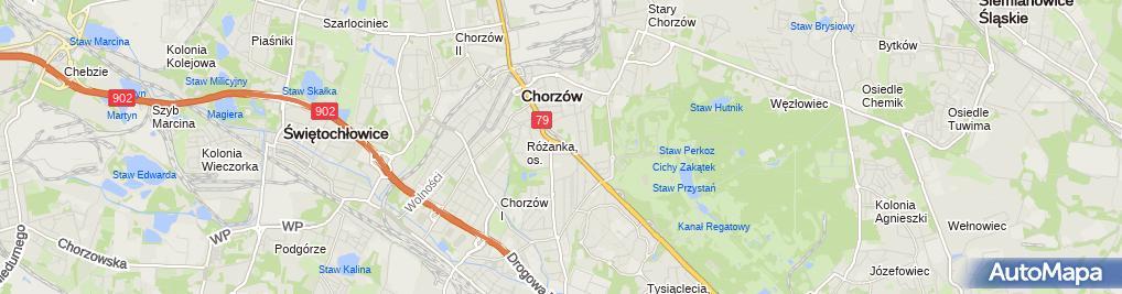 Zdjęcie satelitarne Aku Trade Rafał Czechowski Małgorzata Adamaszek Czechowska