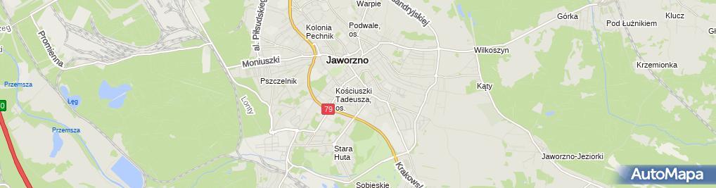 Zdjęcie satelitarne Aleksander Zborowski - Działalność Gospodarcza