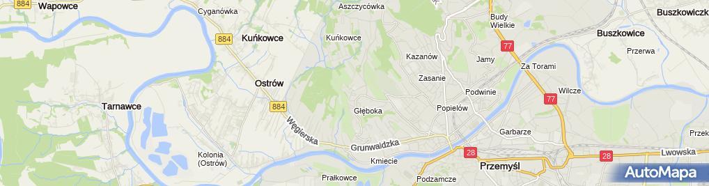 Zdjęcie satelitarne Alicja Iwanów Agencja Reklamowa Iwa
