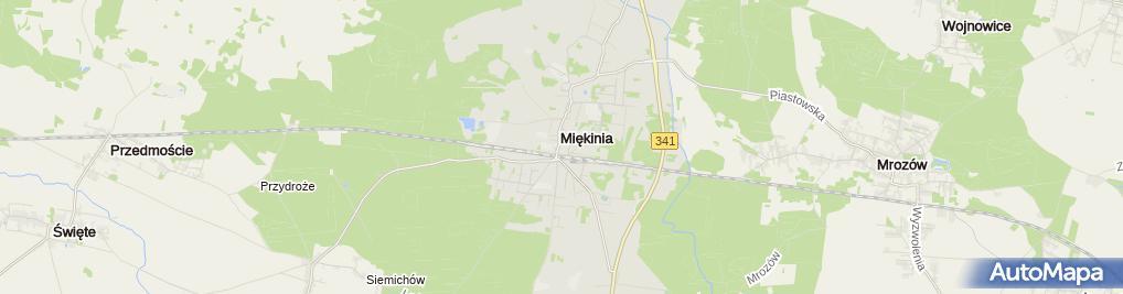 Zdjęcie satelitarne Ando Firma Handlowo Usługowa