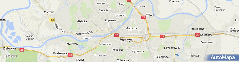 Zdjęcie satelitarne Aneta Picur - Działalność Gospodarcza