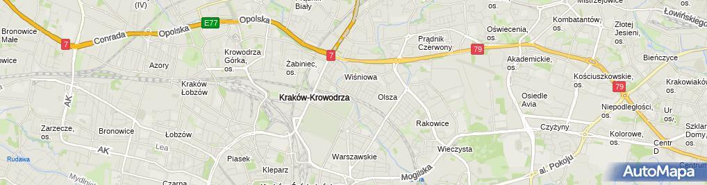 Zdjęcie satelitarne Art Studio Paweł Janus