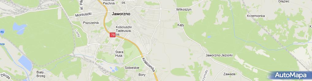 Zdjęcie satelitarne Barbara Sojka - Działalność Gospodarcza