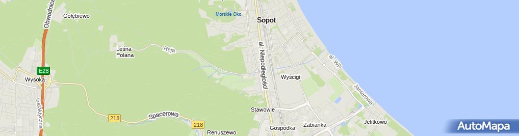 Zdjęcie satelitarne Beling Swietłana