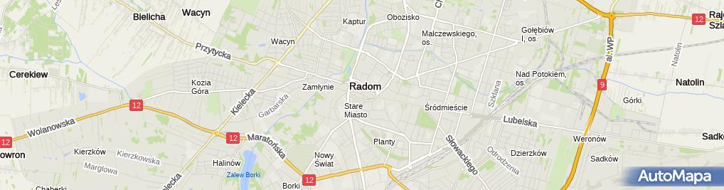 Zdjęcie satelitarne Biuro Usług Administracji i Reklamy Dorota Lewandowska