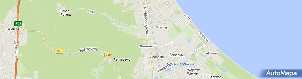 Zdjęcie satelitarne Bożena Rytel